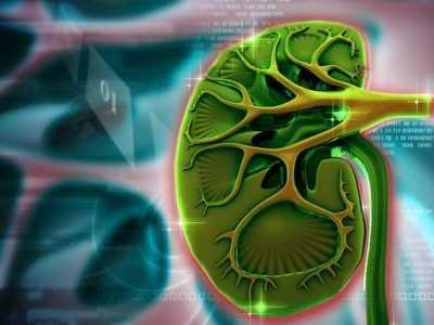 慢性肾炎的症状 慢性肾病各个时期的症状以及主要表现